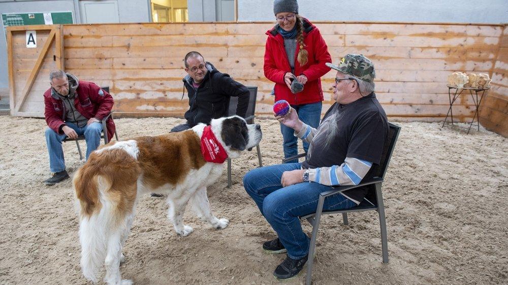 La chienne Saint-Bernard Halix lors d'un exercice avec les résidents de la Fondation Domus sous les yeux de Claudia Müller, responsable des missions sociales pour la Fondation Barry.