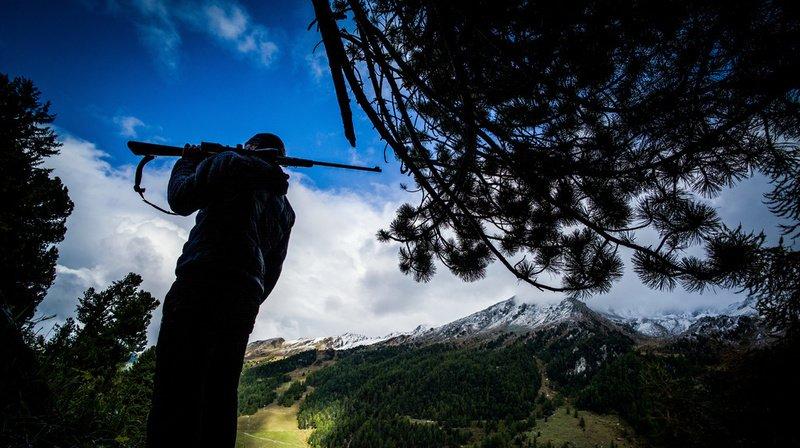 Chasse haute: les objectifs ne sont pas atteints dans le Haut-Valais