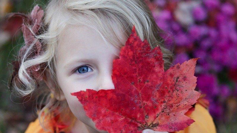 Que faire pendant les vacances d'automne? Nos suggestions