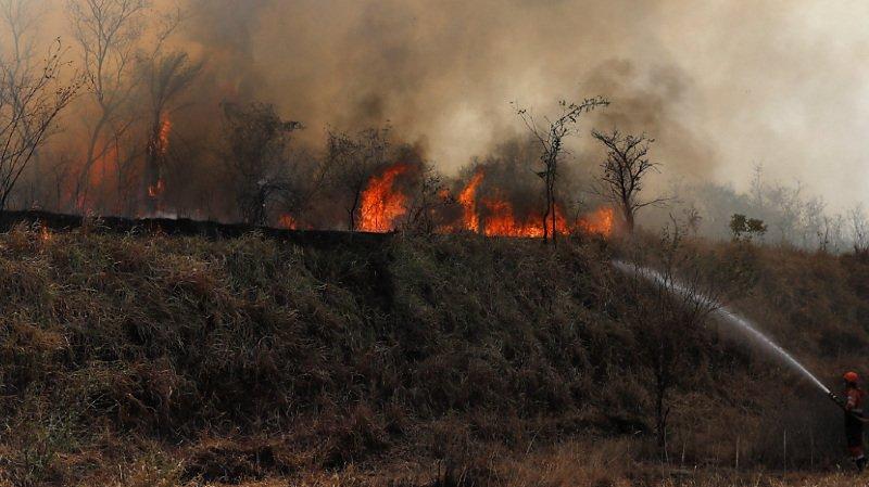 Bolivie: le gouvernement décrète l'état de catastrophe nationale suite aux incendies