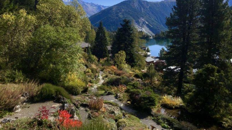 Le jardin alpin Flore-Alpe de Champex-Lac accueille toute une série d'activités d'ici au 1er novembre.