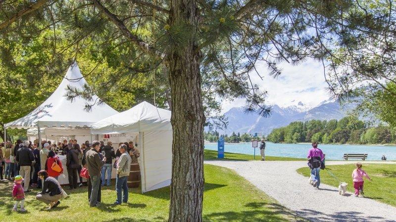Le domaine des Iles à Sion accueillera le Jardin des vins dans une version inédite.