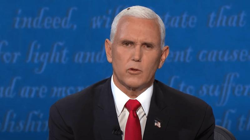 Pendant le débat, une mouche s'est posée sur la tête de Mike Pence sans qu'il ne s'en aperçoive. (capture d'écran)