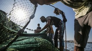 Bien que provenant du Sud, les ressources maritimes profitent surtout à l'hémisphère nord