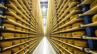 Bel, fabricant de La Vache qui rit, lance le fromage sans lait