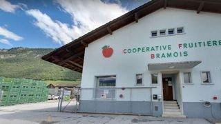 La coopérative fruitière de Bramois cambriolée