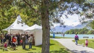Sion: le Jardin des vins se déroule en version automnale aux Iles