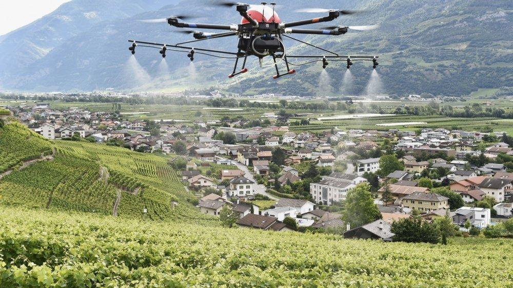 Drones pour sulfater les vignes.