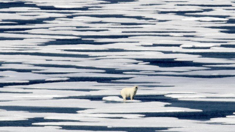 Climat: en Arctique, la banquise est à son niveau le plus faible pour octobre