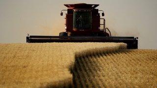 Santé: des pesticides interdits en Europe continuent à être exportés