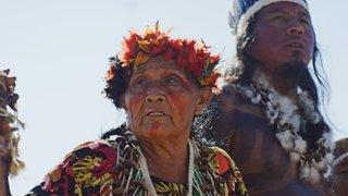 Documentaire: Daniel Schweizer et le cri d'alarme des Indiens d'Amazonie