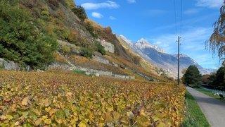 Météo: le début novembre est chaud en Valais mais sans record marquant
