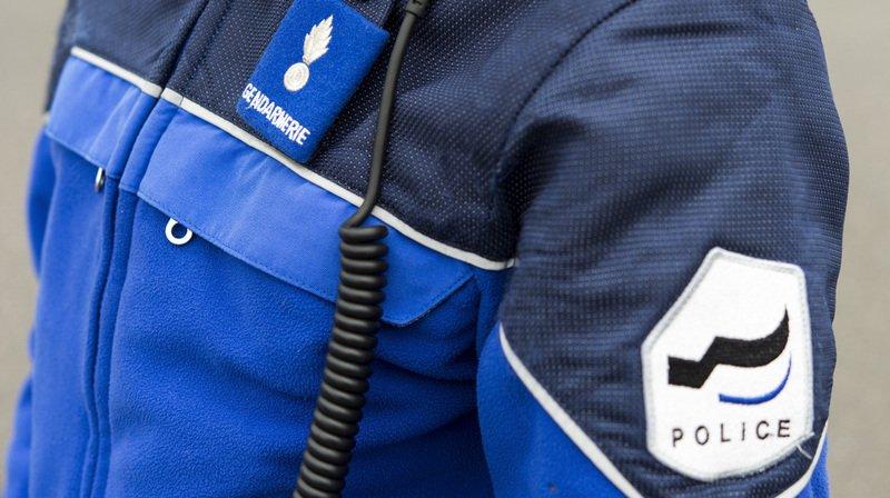 Six vaches tuées par un train CFF à Montet (FR), deux personnes blessées