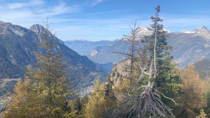 Vallée du Trient: 82 propositions pour développer le parc régional naturel