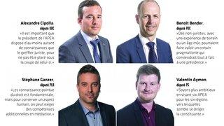 Un Valais à neuf APEA professionnelles pour éviter les scandales