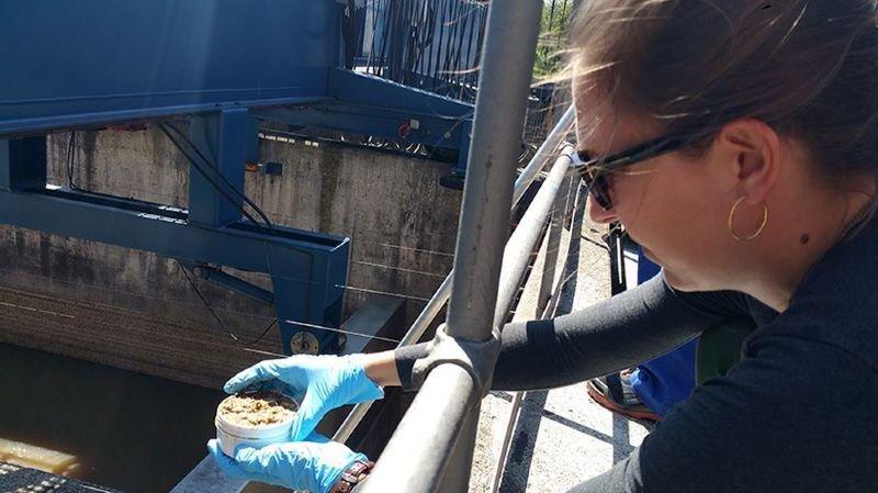Une étudiante prélève des échantillons de boues à la Step de Werdhölzli.