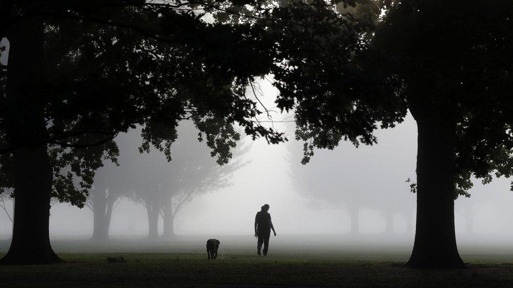 La Nouvelle Zélande a été mise sous cloche en mars, avec interdiction de sortir de chez soi sauf pour chercher de la nourriture. Une tactique payante.