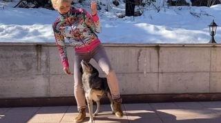 Valais: Joey, le chien qui danse «Jerusalema»