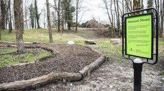 Pour le canton et la commune de Monthey, le site de l'ancienne décharge des Mangettes est sous contrôle