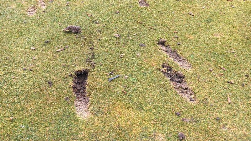 Des morceaux de gazon ont notamment été arrachés sur l'un des greens du parcours.