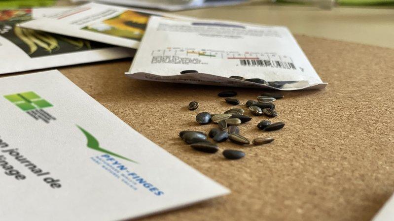 Les kits avec les semences peuvent être réservés en ligne jusqu'au 28 mars. Ils seront disponibles dès le 12 avril.