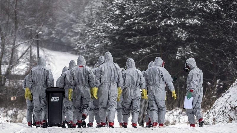 Le virus de la grippe aviaire sévit actuellement dans plusieurs pays européens.