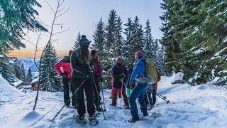 Verbier: plusieurs promenades pour s'instruire dans la nature