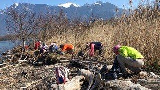 Noville: les bénévoles appelés à la rescousse pour nettoyer la réserve naturelle du Vieux-Rhône