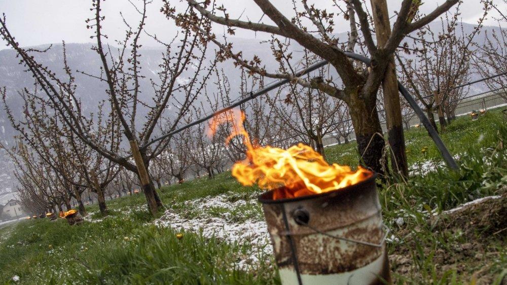 Certains agriculteurs, comme ici à Fully, ont utilisé des bougies à la paraffine ou chaufferettes pour limiter la casse dans la nuit de mardi à mercredi.
