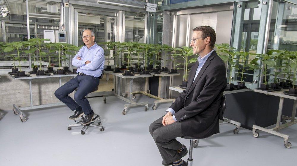 Interview de Stéphane Odermatt et de Jérôme Cassayre au centre de recherche de Syngenta à Stein.