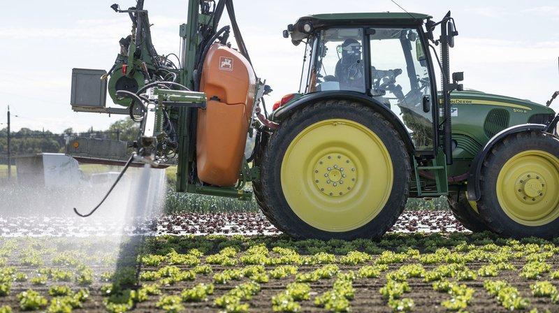 Les délégués ont finalement estimé que les mesures proposées par l'initiative ne peuvent pas résoudre les problèmes en les mettant seulement sur les épaules des paysans (illustration).