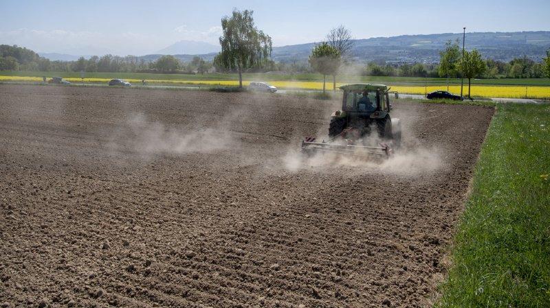 Initiative pour l'interdiction des pesticides de synthèse: l'essentiel de la votation en 5 questions