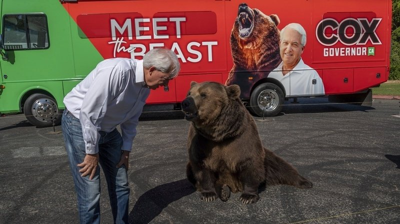 Californie: un républicain fait campagne avec un ours