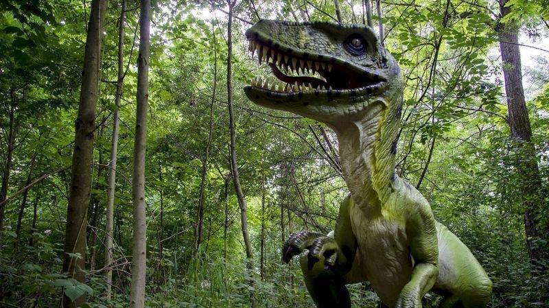 Sion: devenez paléontologues d'un jour à DinoWorld