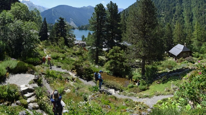 En plus d'offrir une superbe escapade en pleine nature, le jardin botanique Flore-Alpe accueille une grande exposition durant toute la belle saison.
