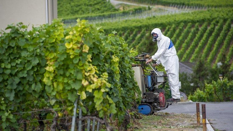 Pesticides: ces polluants qu'on ingère involontairement