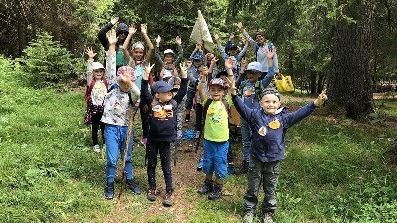 Savièse: des camps dans la forêt sont destinés à de petits lutins