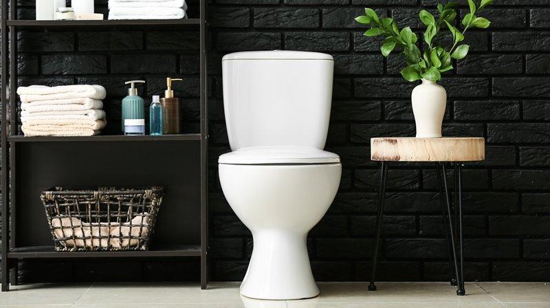 Quel type de toilettes installer chez soi?