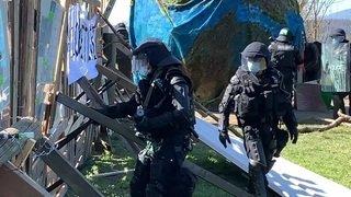 ZAD du Mormont: la police est passée à l'assaut