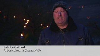 Gel en Valais: les dégâts risquent d'être importants