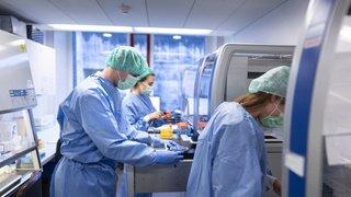 Coronavirus: le variant britannique n'entraînerait pas plus de formes graves