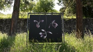 Les photos de Brigitte Lustenberger subliment la mort dans une exposition en plein air
