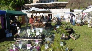 A Ollon (VD), le jardin et les plantes tiendront la vedette ce week-end