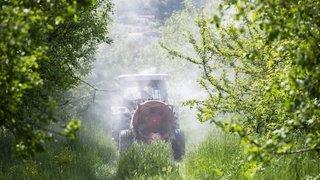Pourquoi l'initiative anti-pesticides de synthèse ne fait pas l'unanimité dans le milieu bio en Valais