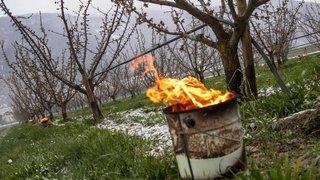 Gel: l'agriculture valaisanne sur le pied de guerre