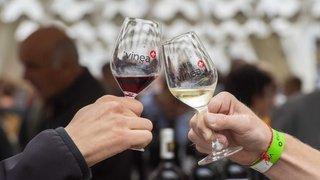 Vinea prête à exporter son expertise jusqu'au Canada