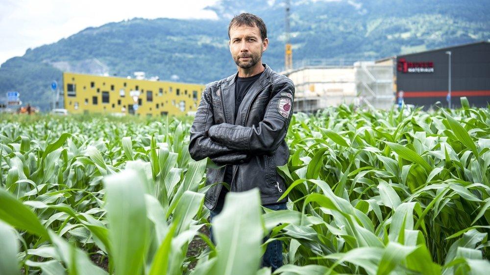 Pascal Lattion sur un champ de maïs qu'il travaille en coopérative. Derrière lui, Collombey-Muraz s'étend.