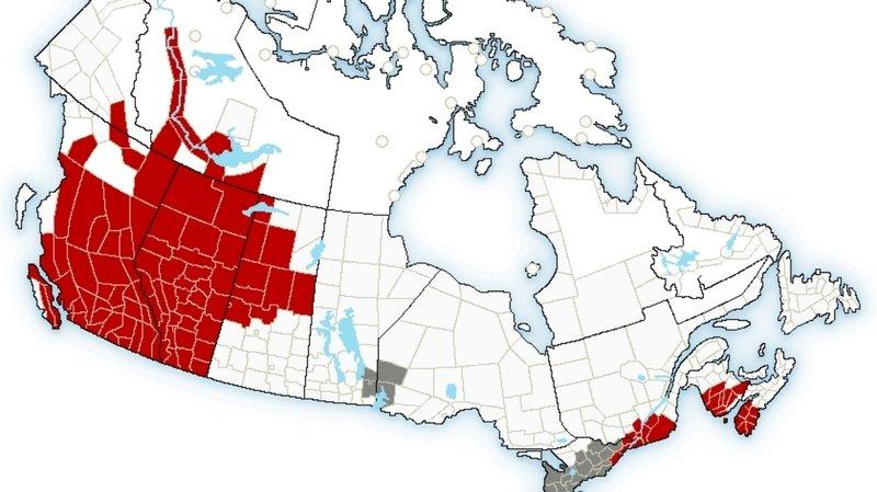 Météo: un «dôme de chaleur» amène des températures record au Canada