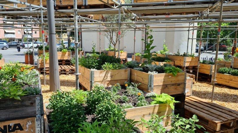 Le jardin apporte un peu de fraîcheur dans l'espace urbain.