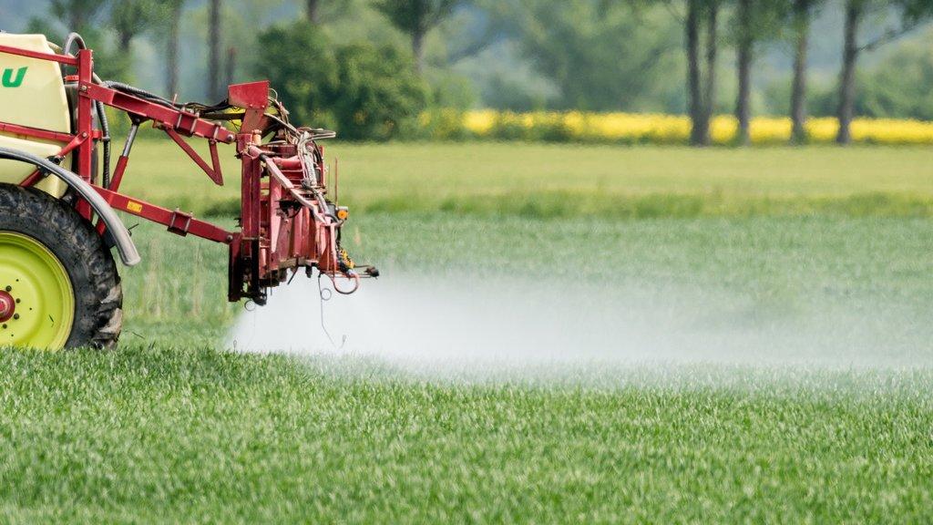 Votations fédérales: large rejet des initiatives phytosanitaires à 61%